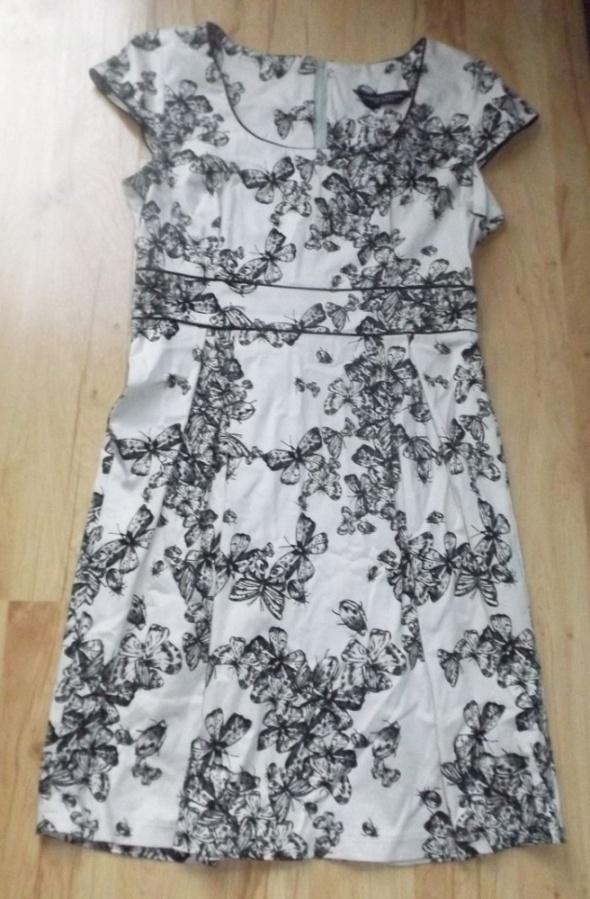 Szykowna sukienka w motyle Dorothy Perkins 40 do42...