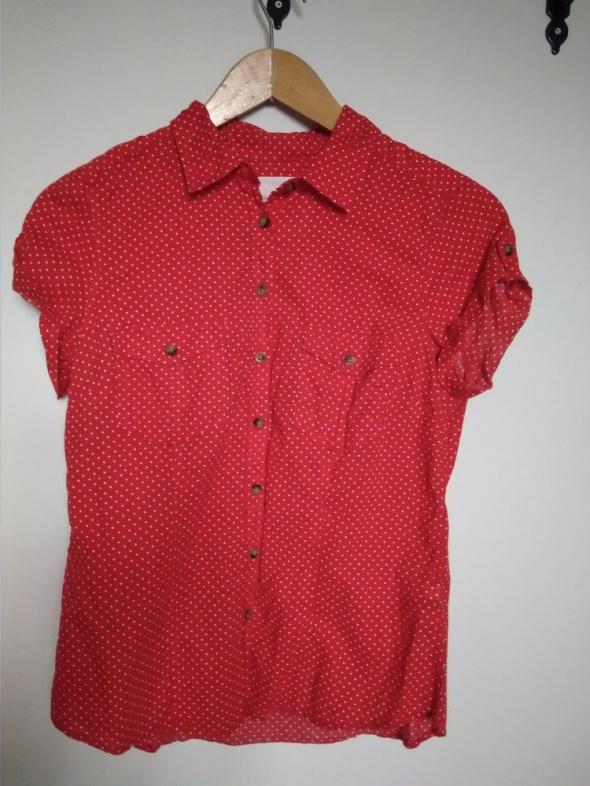 czerwona koszula w białe kropki H&M