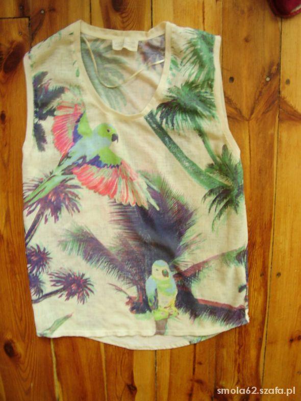 Bluzka w papugi Zary