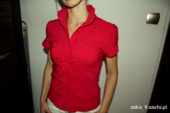 Różowa bluzka z żabotem