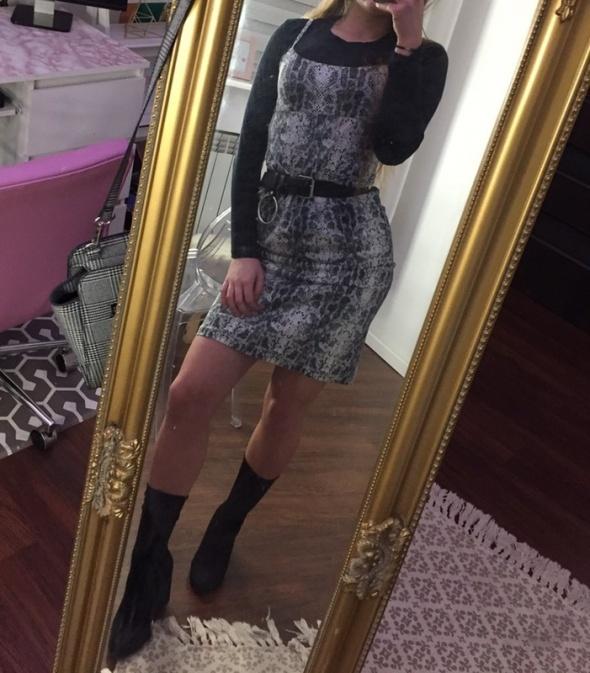 Sukienka hit jesieni wężowy print