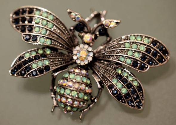 Broszka owad srebrna cudo