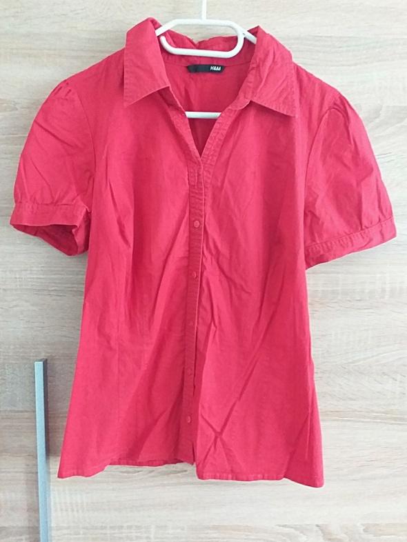 Koszula HM 36