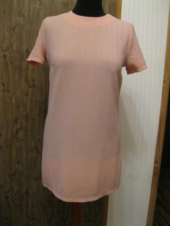 sukienka CAMEO ROSA S pudrowa