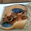 Sandały PEPE JEANS Harriet COR 252A dk blue rozmiar 40