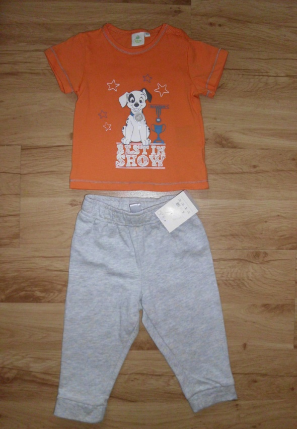 Komplety Komplet spodnie dresowe szare i bluzeczka z dalmat