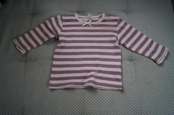 paskowana bluzeczka 74