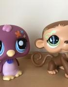 oryginalne figurki Littlest Pet Shop LPS...