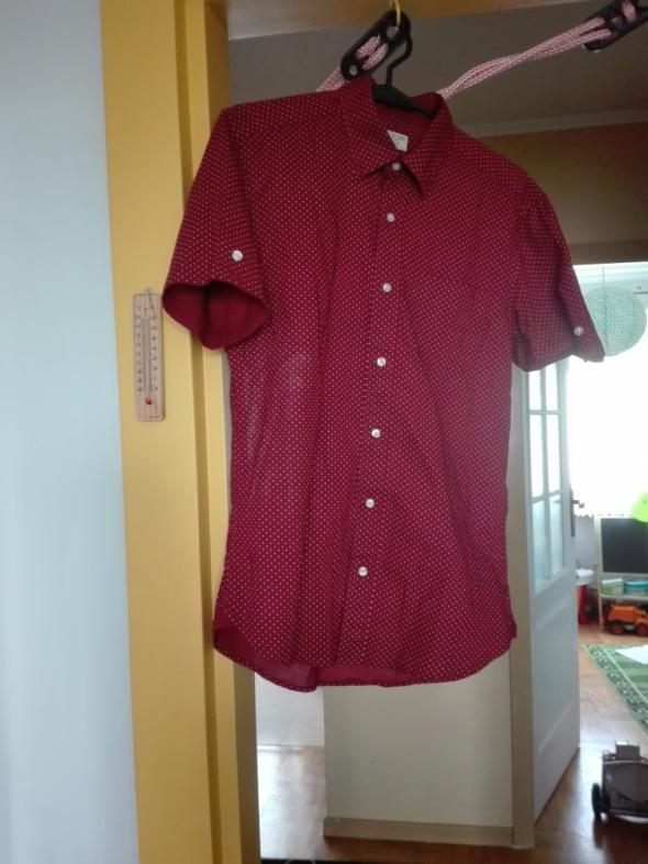 Koszule Koszula kropki męska