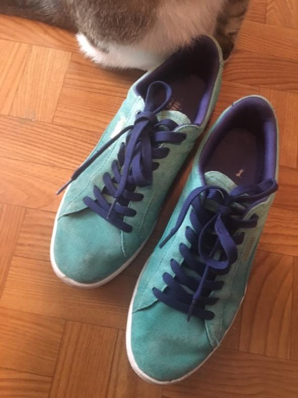 błękitne buty puma 39...