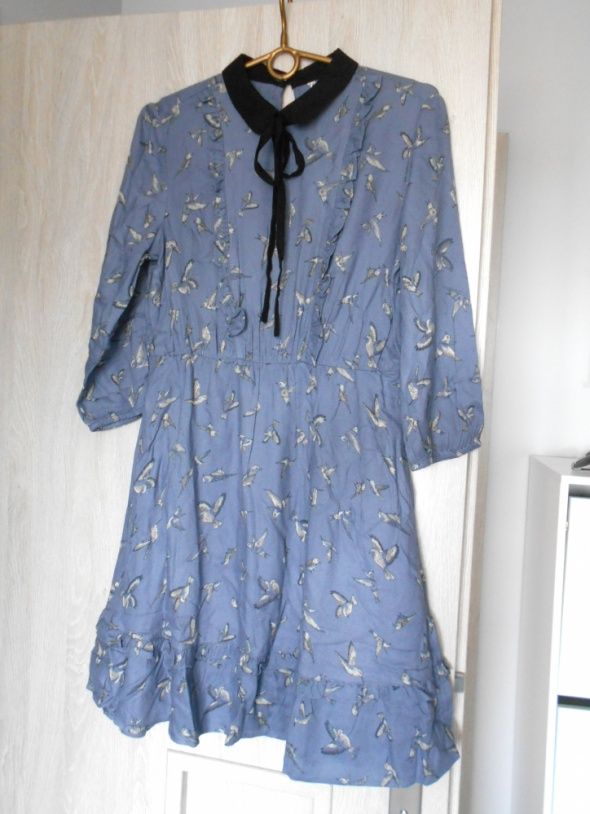 CA sukienka wzory pensjonarka kołnierzyk ptaszki...