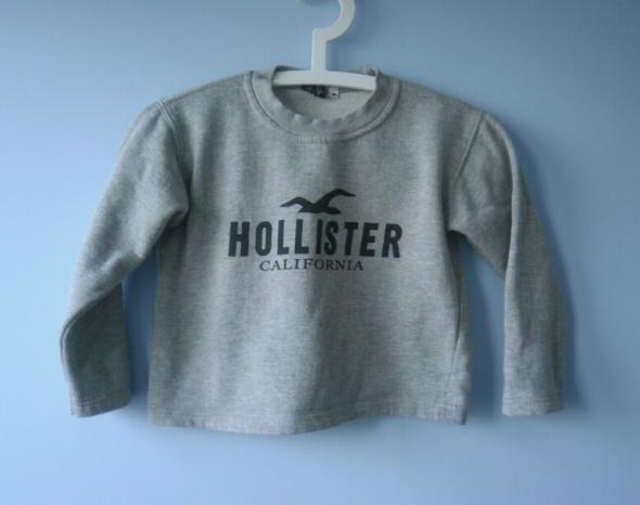 Hollister szara bluza dziecięca dresowa