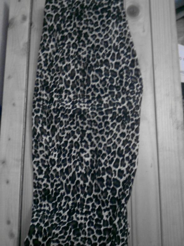 Spodnie w naturalną panterkę aksamitne cętki punk