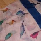 apaszki w ptaki i sowy