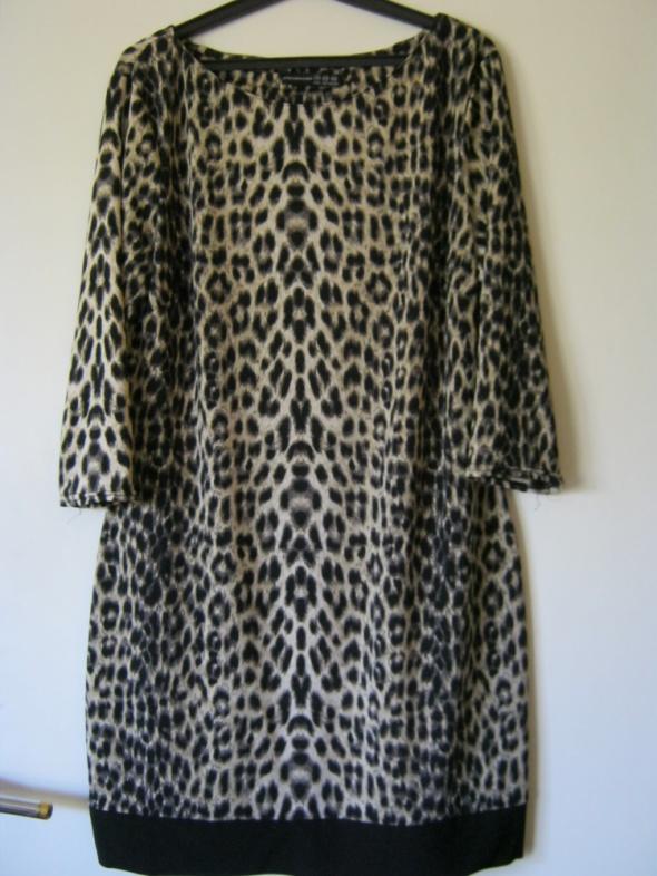 Panterkowa sukienka tunika