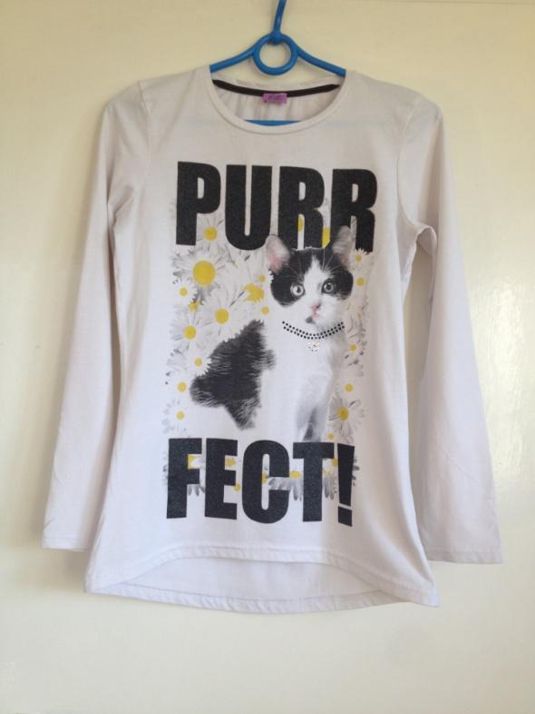 Bluzka kot kotek dłuższy tył biała długi rękaw XS...