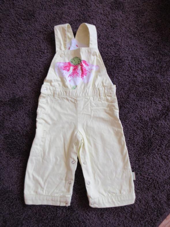Spodnie i spodenki Ciepłe spodnie ogrodniczki seledynowe