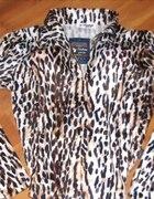 n o w a fantastyczna pantera bluzeczka zip