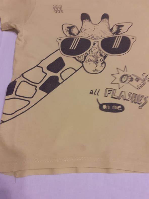 Koszulka z żyrafą