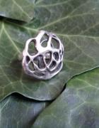 Piękna srebrna róża może warmet...