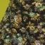 Krótkie spodenki w kwiaty wysokm stanem szorty flo