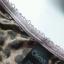 Sexy sweet komplet bielizny w panterkę stanik 70 D majtki M Marks Spencer