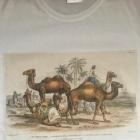 koszulka vintage biała z wzorem retro