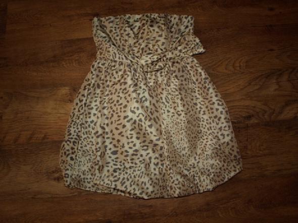 Suknie i sukienki Panterka Atmosphere M