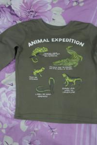 Bluzka zielona w krokodyle 104