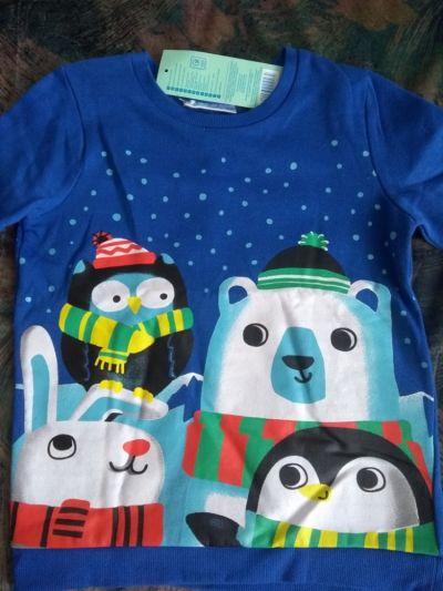 Bluzy Bluza dla chłopca