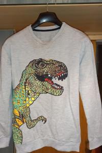 Bluza z dinozaurem