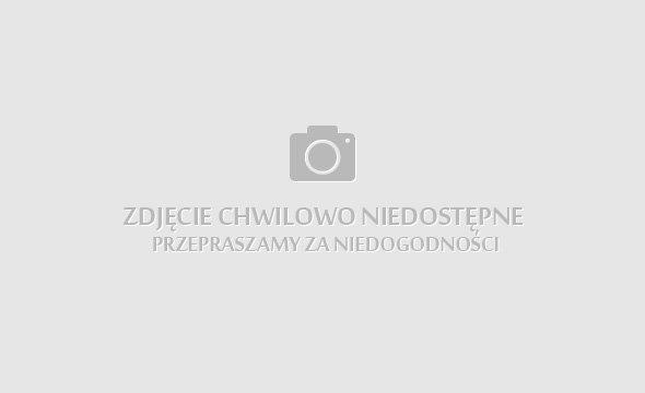 Spodenki Szorty DIY ćwieki blogerskie nity galaxy 36 S sexy